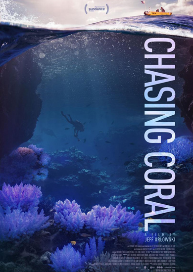Chasing Coral DVD cover